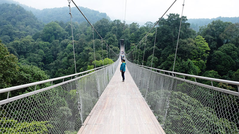Jembatan-Gantung-Cisaat